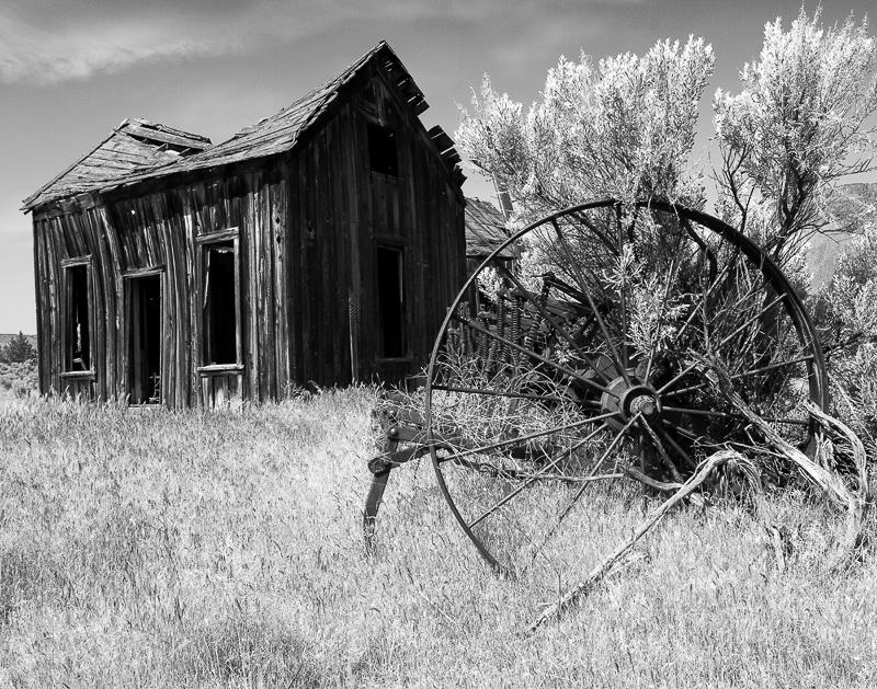 Abandon Homestead